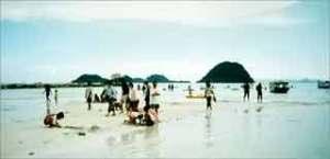 pasir-putih